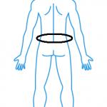 腰痛(背中)
