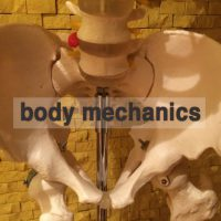 body mechanicsとは 湘南あしケア訪問サービス