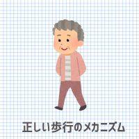 正しい歩行のメカニズム 湘南あしケア訪問サービス